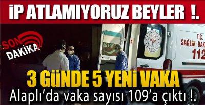 ALAPLI NEREYE GİDİYOR !.
