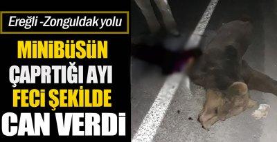 ANİDEN YOLA ÇIKTI !.