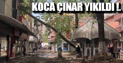 """""""VERİLMİŞ SADAKAMIZ VARMIŞ"""""""