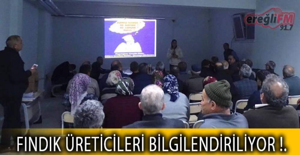 FINDIK ÜRETİCİLERİ BİLGİLENDİRİLİYOR !.