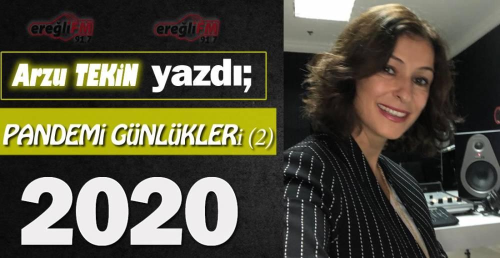 PANDEMİ GÜNLÜKLERİ (2) VE 2020 !.