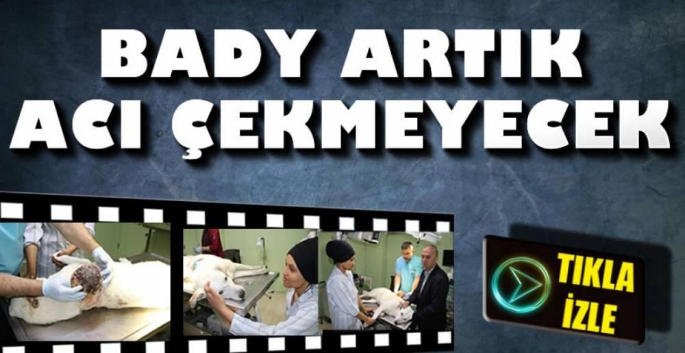 TEDAVİSİ EVDE DEVAM EDECEK!.
