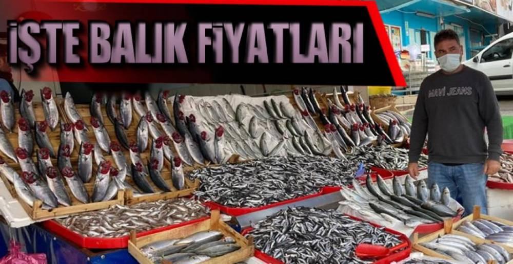TEZGAHLAR ŞENLENDİ, PEKİ YA FİYATLAR !.