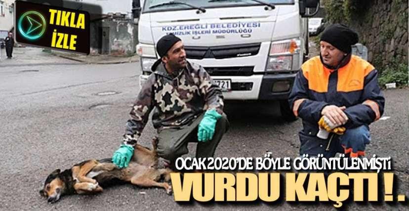 AYŞE HAYATINI KAYBETTİ !.