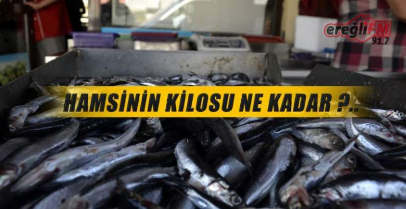 EREĞLİ'DE SON BALIK FİYATLARI !.