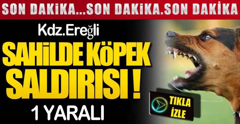 SAHİLDE YAŞANDI !.