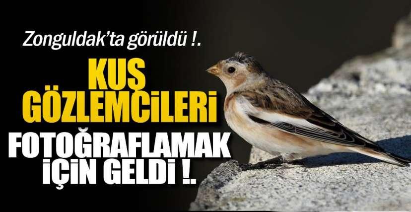 SOSYAL MEDYADA PAYLAŞIM REKORU KIRDI !.